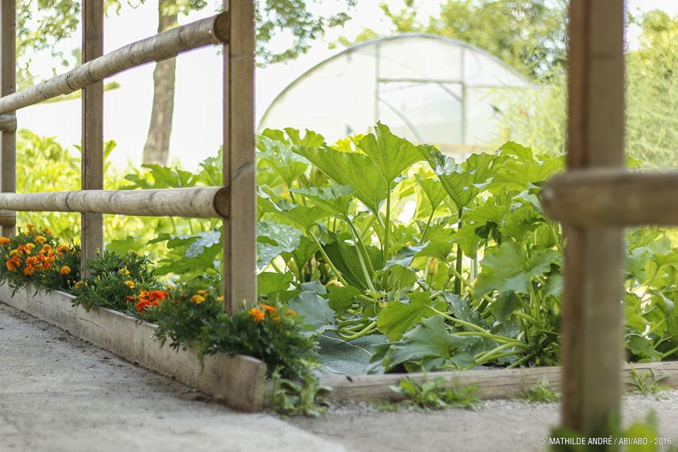 Jardinage de saison