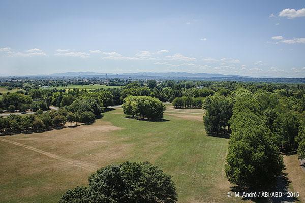 Vue aérienne depuis la Grande Roue sur Lyon