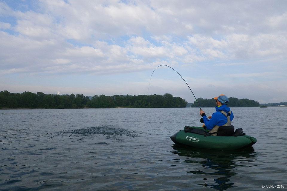 Comme attraper lAmour blanc dans la pêche russe 3